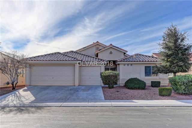 3813 Robin Knot, North Las Vegas, NV 89084 (MLS #2056379) :: Vestuto Realty Group