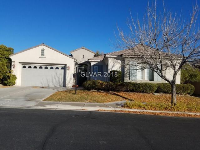 10566 Abbotsbury, Las Vegas, NV 89135 (MLS #2057750) :: ERA Brokers Consolidated / Sherman Group