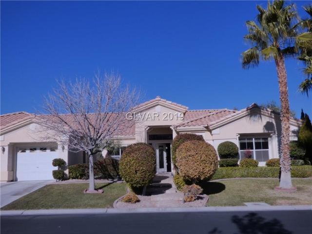 7400 Bisonwood, Las Vegas, NV 89131 (MLS #2059092) :: ERA Brokers Consolidated / Sherman Group