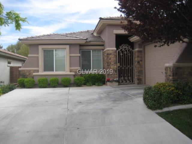 11137 Golden Aster, Las Vegas, NV 89135 (MLS #2059162) :: ERA Brokers Consolidated / Sherman Group