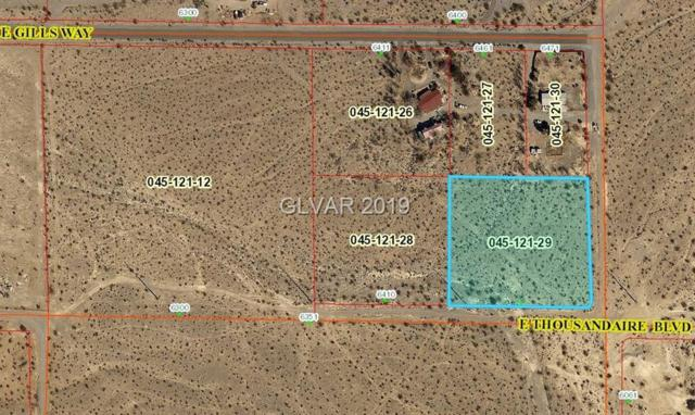 6460 E Thousandaire, Pahrump, NV 89061 (MLS #2059168) :: The Snyder Group at Keller Williams Marketplace One