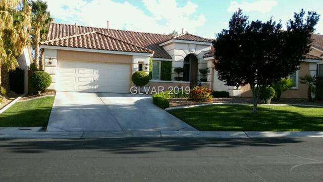 9913 Wonderful Day, Las Vegas, NV 89148 (MLS #2059631) :: ERA Brokers Consolidated / Sherman Group