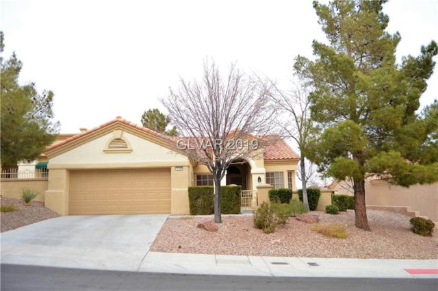 11004 Bourbon Run, Las Vegas, NV 89134 (MLS #2061298) :: ERA Brokers Consolidated / Sherman Group