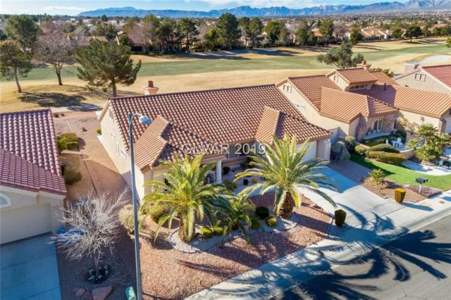 9017 Starmount, Las Vegas, NV 89134 (MLS #2061750) :: ERA Brokers Consolidated / Sherman Group