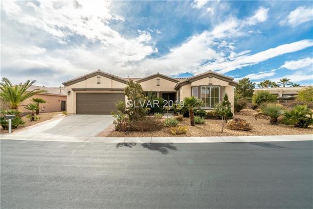 10565 Cerotto, Las Vegas, NV 89135 (MLS #2062769) :: Signature Real Estate Group