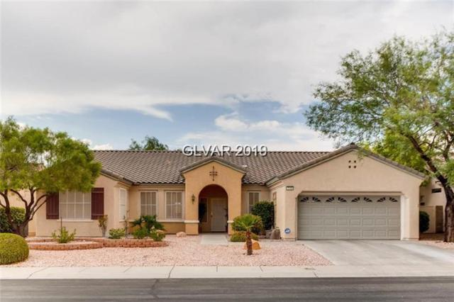 2558 Downeyville, Henderson, NV 89052 (MLS #2063488) :: Signature Real Estate Group