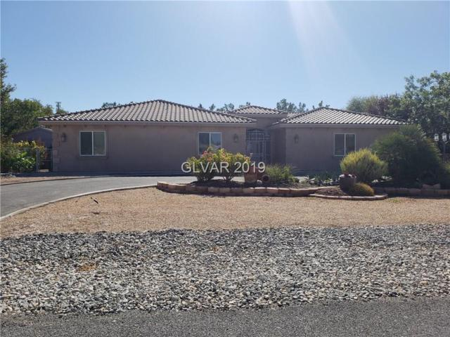 3781 S Mallard, Pahrump, NV 89048 (MLS #2063866) :: Trish Nash Team