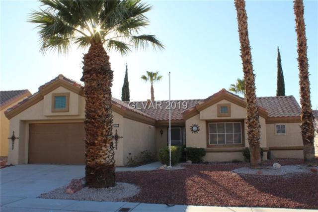 2521 Desert Sands, Las Vegas, NV 89134 (MLS #2063991) :: Signature Real Estate Group