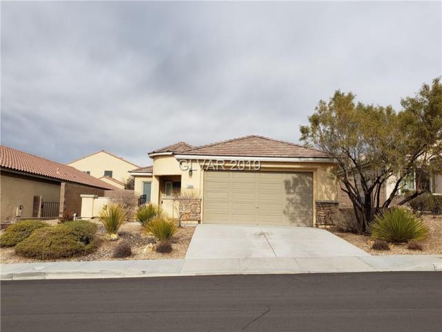 2684 Dirleton, Las Vegas, NV 89044 (MLS #2064408) :: Signature Real Estate Group