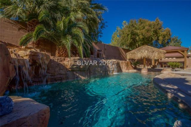 10619 San Bellacova, Las Vegas, NV 89141 (MLS #2065194) :: The Snyder Group at Keller Williams Marketplace One