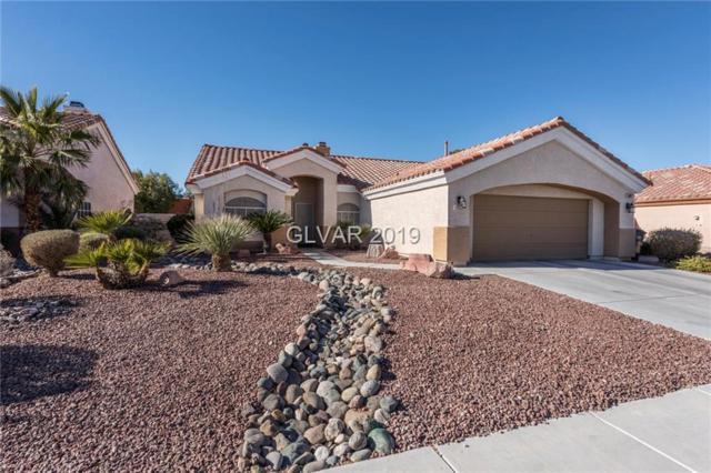 5437 Rose Hills, Las Vegas, NV 89149 (MLS #2065598) :: Vestuto Realty Group