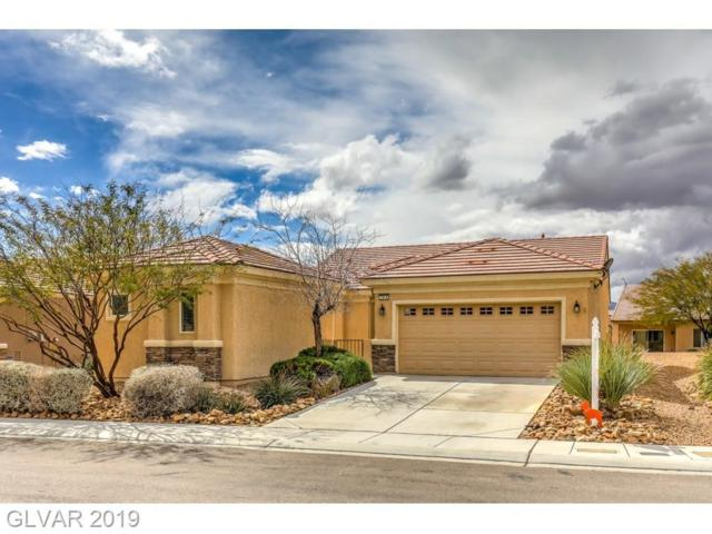 7919 Crested Starling, North Las Vegas, NV 89084 (MLS #2073429) :: ERA Brokers Consolidated / Sherman Group