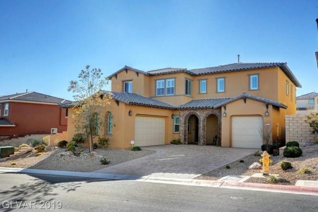 457 Paso De Montana, Las Vegas, NV 89138 (MLS #2073452) :: Vestuto Realty Group
