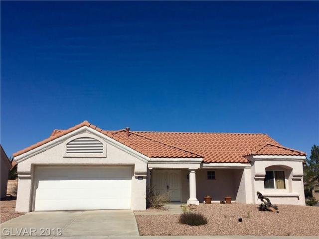 9028 Marble, Las Vegas, NV 89134 (MLS #2074093) :: The Snyder Group at Keller Williams Marketplace One
