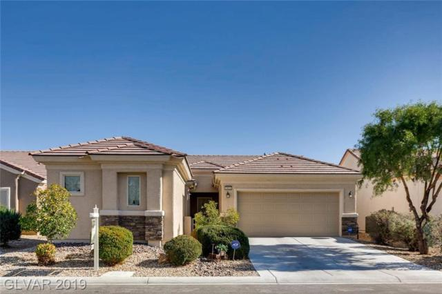 7412 Petrel, North Las Vegas, NV 89084 (MLS #2075478) :: Vestuto Realty Group