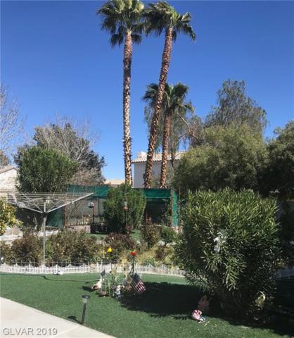 9976 Catseye Cove, Las Vegas, NV 89183 (MLS #2076505) :: Five Doors Las Vegas