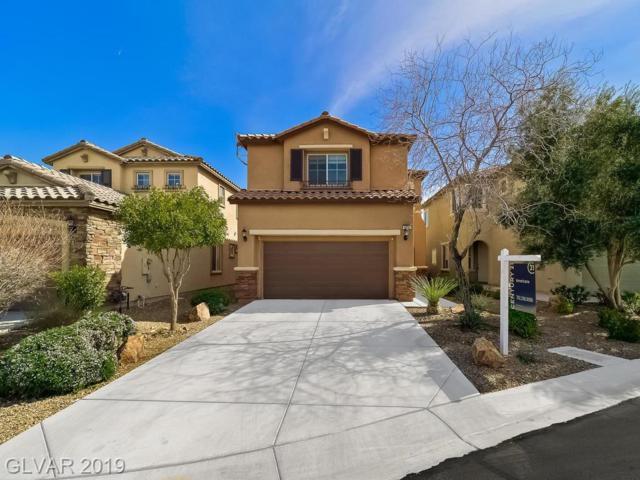9782 Pan Falls, Las Vegas, NV 89178 (MLS #2077646) :: Vestuto Realty Group