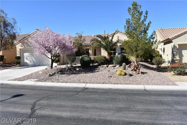 1525 Bonner Springs, Henderson, NV 89052 (MLS #2078026) :: Vestuto Realty Group