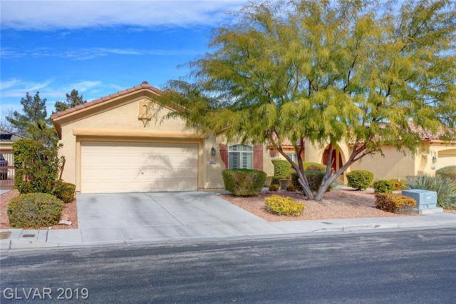 4490 Prada, Las Vegas, NV 89141 (MLS #2078109) :: Vestuto Realty Group