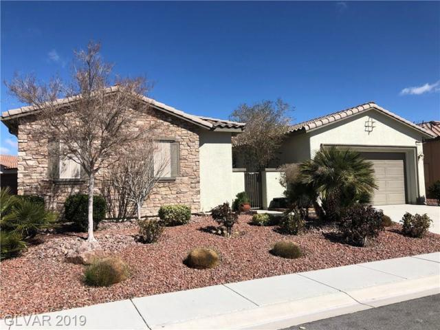 5260 E Agio, Pahrump, NV 89061 (MLS #2078229) :: Vestuto Realty Group