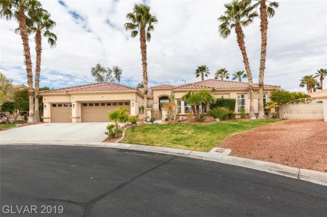 7331 Chaparral Cove, Las Vegas, NV 89131 (MLS #2078237) :: Vestuto Realty Group