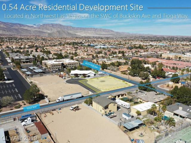 Buckskin Ave, Las Vegas, NV 89129 (MLS #2078281) :: Trish Nash Team