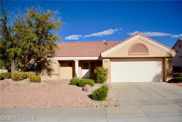 2620 Springridge, Las Vegas, NV 89134 (MLS #2078795) :: Signature Real Estate Group