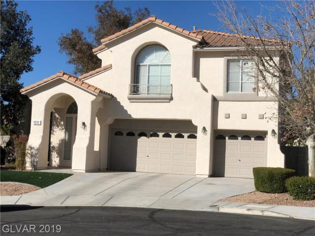 1256 Rising Cloud, Henderson, NV 89052 (MLS #2079637) :: Signature Real Estate Group