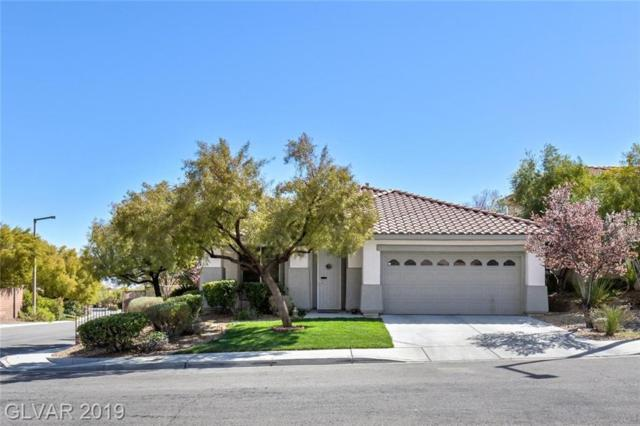 11073 Village Ridge, Las Vegas, NV 89135 (MLS #2079975) :: Signature Real Estate Group
