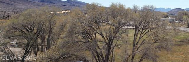 Richardville, Alamo, NV 89001 (MLS #2080077) :: Vestuto Realty Group