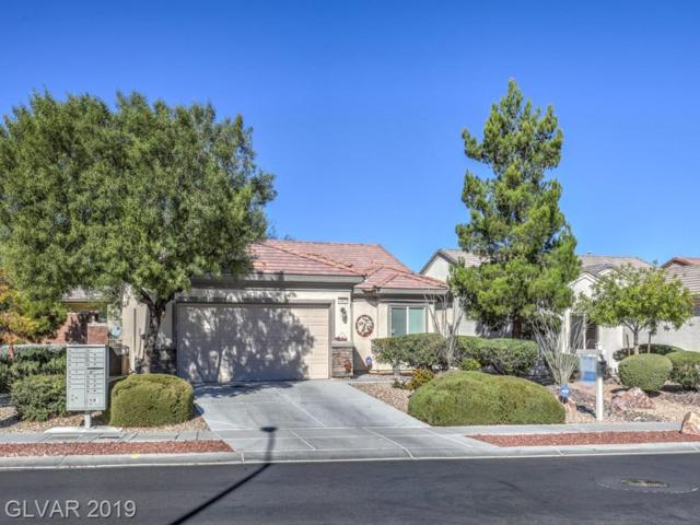 7417 Widewing, North Las Vegas, NV 89084 (MLS #2080083) :: ERA Brokers Consolidated / Sherman Group