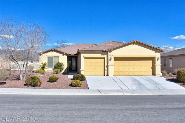 5417 S Juneau, Pahrump, NV 89061 (MLS #2080197) :: Vestuto Realty Group