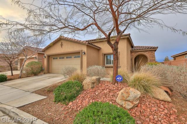 7170 Sunny Countryside, Las Vegas, NV 89179 (MLS #2080278) :: Signature Real Estate Group