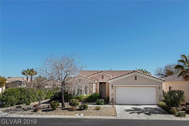 10355 Brillare, Las Vegas, NV 89135 (MLS #2080532) :: Signature Real Estate Group