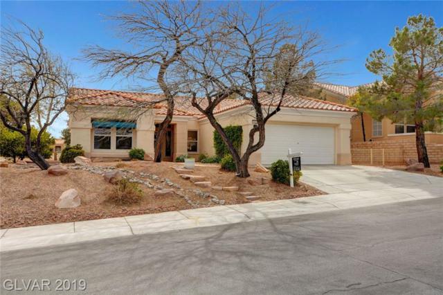 10429 Shoalhaven, Las Vegas, NV 89134 (MLS #2080570) :: Vestuto Realty Group