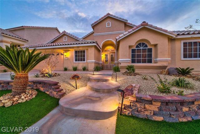 2385 E Goldfire, Henderson, NV 89052 (MLS #2081141) :: Signature Real Estate Group