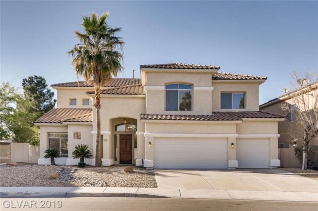 1732 Sand Storm, Henderson, NV 89074 (MLS #2081185) :: Capstone Real Estate Network