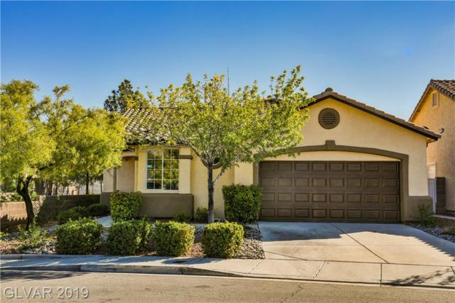 3232 Cherum, Las Vegas, NV 89135 (MLS #2081230) :: ERA Brokers Consolidated / Sherman Group