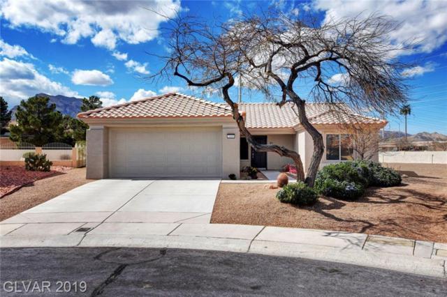 3109 Haddon, Las Vegas, NV 89134 (MLS #2081413) :: ERA Brokers Consolidated / Sherman Group