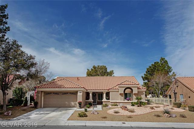 3001 Linkview, Las Vegas, NV 89134 (MLS #2081758) :: ERA Brokers Consolidated / Sherman Group