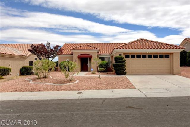 2608 Youngdale, Las Vegas, NV 89134 (MLS #2085439) :: Capstone Real Estate Network