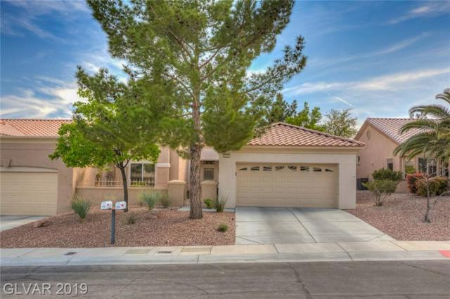 9505 City Hill, Las Vegas, NV 89134 (MLS #2085461) :: Capstone Real Estate Network
