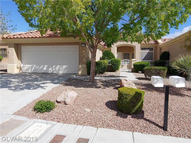 10020 Heyfield, Las Vegas, NV 89134 (MLS #2087282) :: Capstone Real Estate Network