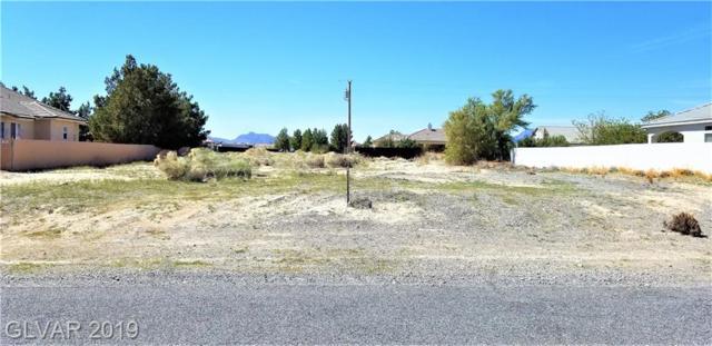 2410 S Turtle, Pahrump, NV 89048 (MLS #2087339) :: Capstone Real Estate Network