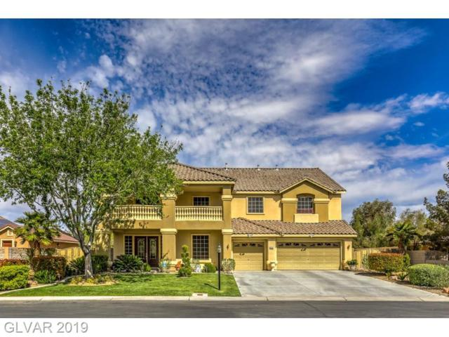 8028 Church Steeple, Las Vegas, NV 89131 (MLS #2089073) :: The Snyder Group at Keller Williams Marketplace One