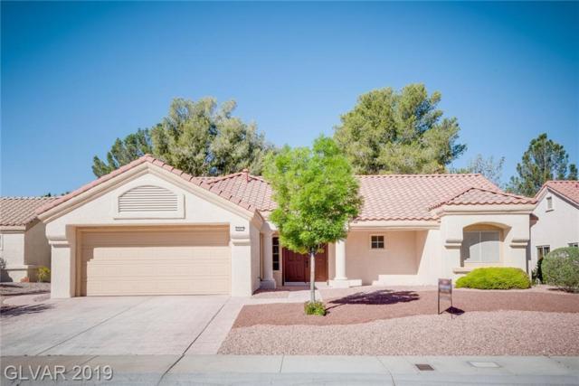 2641 Saltbush, Las Vegas, NV 89134 (MLS #2089940) :: Vestuto Realty Group