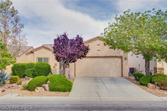 7432 Chipping Sparrow, North Las Vegas, NV 89084 (MLS #2094137) :: Vestuto Realty Group