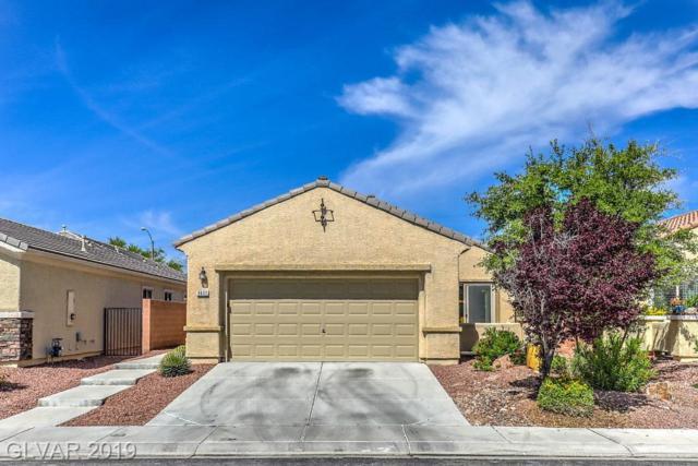 6633 Scavenger Hunt, North Las Vegas, NV 89084 (MLS #2095931) :: ERA Brokers Consolidated / Sherman Group