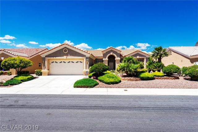 2125 Red Dawn Sky, Las Vegas, NV 89134 (MLS #2096892) :: The Snyder Group at Keller Williams Marketplace One