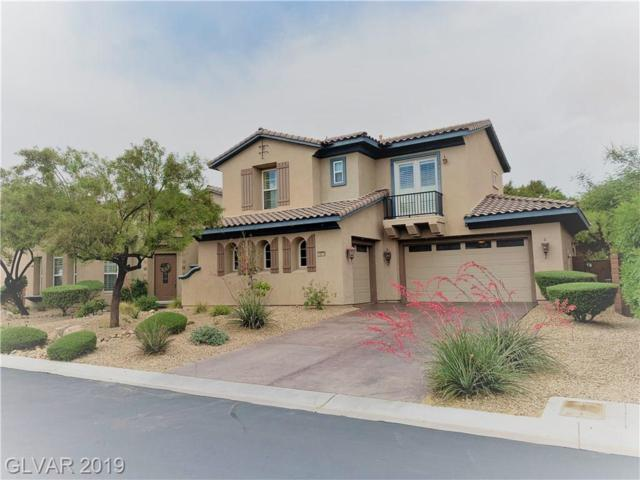 10079 Magical View, Las Vegas, NV 89178 (MLS #2097075) :: Vestuto Realty Group